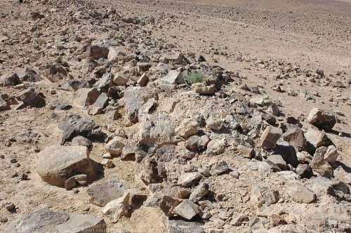 Загадочные -Большие круги- Иордании (8 фото)