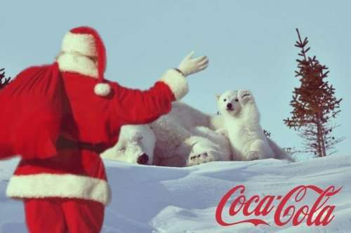 Приветствующий полярный медвежонок и фотожабы на него (13 фото)