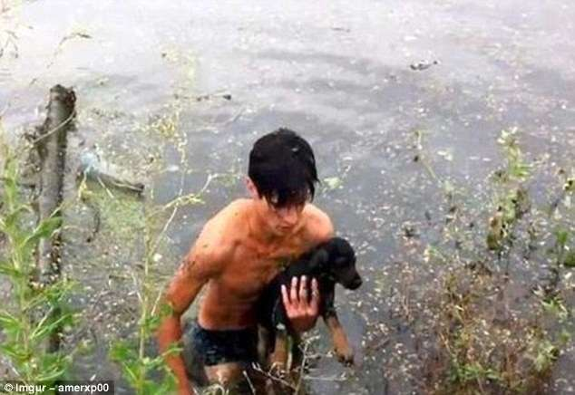 Эти люди рисковали жизнью, чтобы спасти животных (20 фото)
