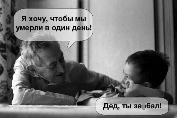 Смешные картинки с надписями (40 фото)