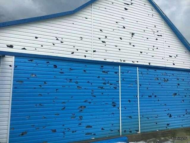 Последствия града в Алтайском крае (2 фото)