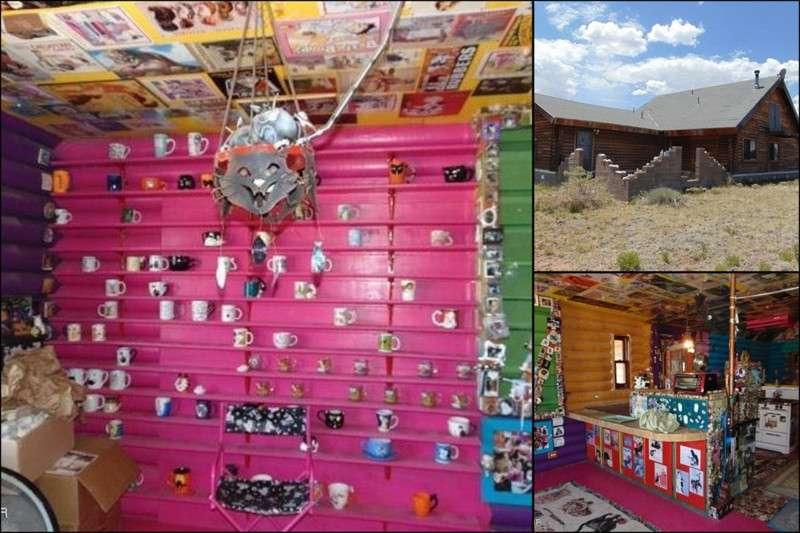 В Штате Аризона на продажу выставлен самый странный дом в мире! (23 фото)