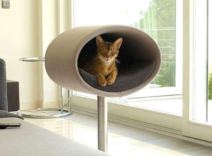 Как построить кошачий дом для своего питомца (21 фото)