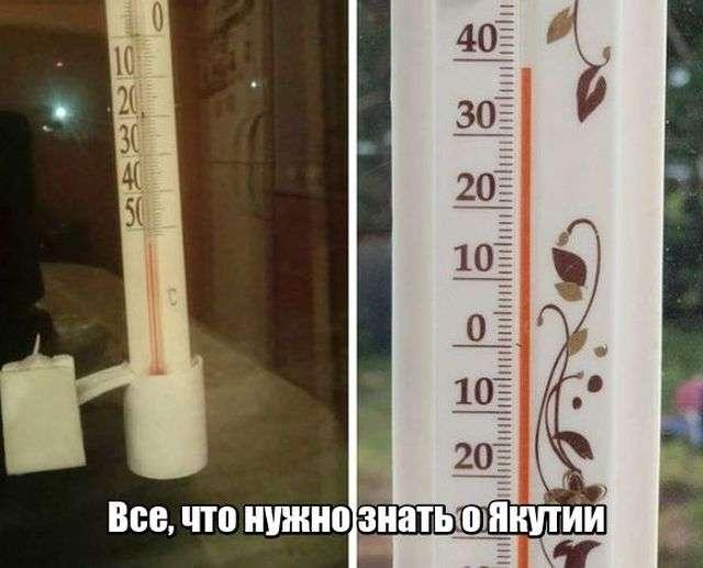 Подборка прикольных фото №1909 (50 фото)