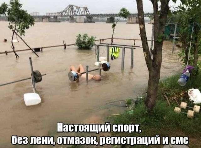Подборка прикольных фото №1917 (44 фото)
