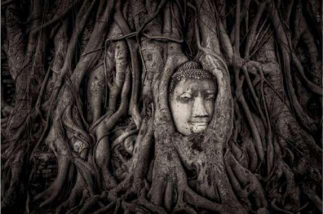 20 уникальных и поразительных фотографий со всего мира