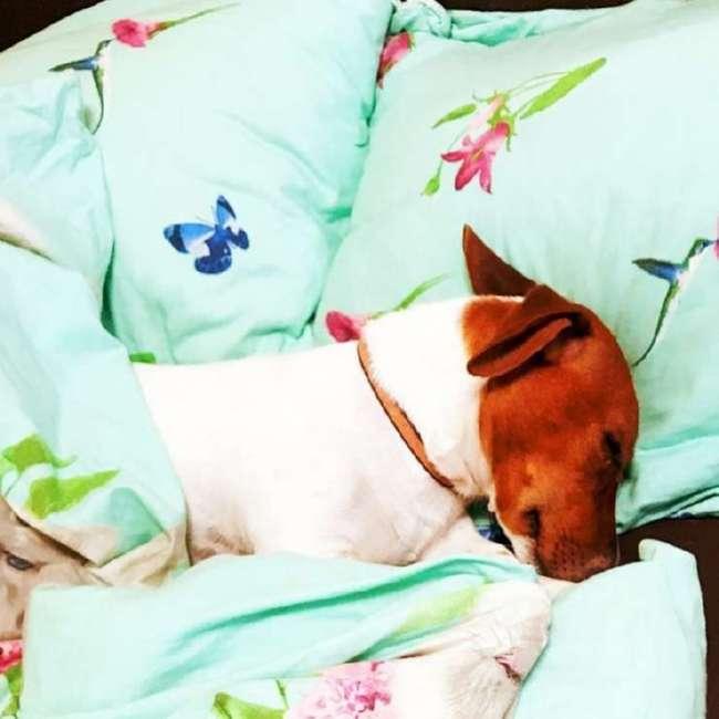 20 фото о тотальной пятничной усталости, в которых вы узнаете себя