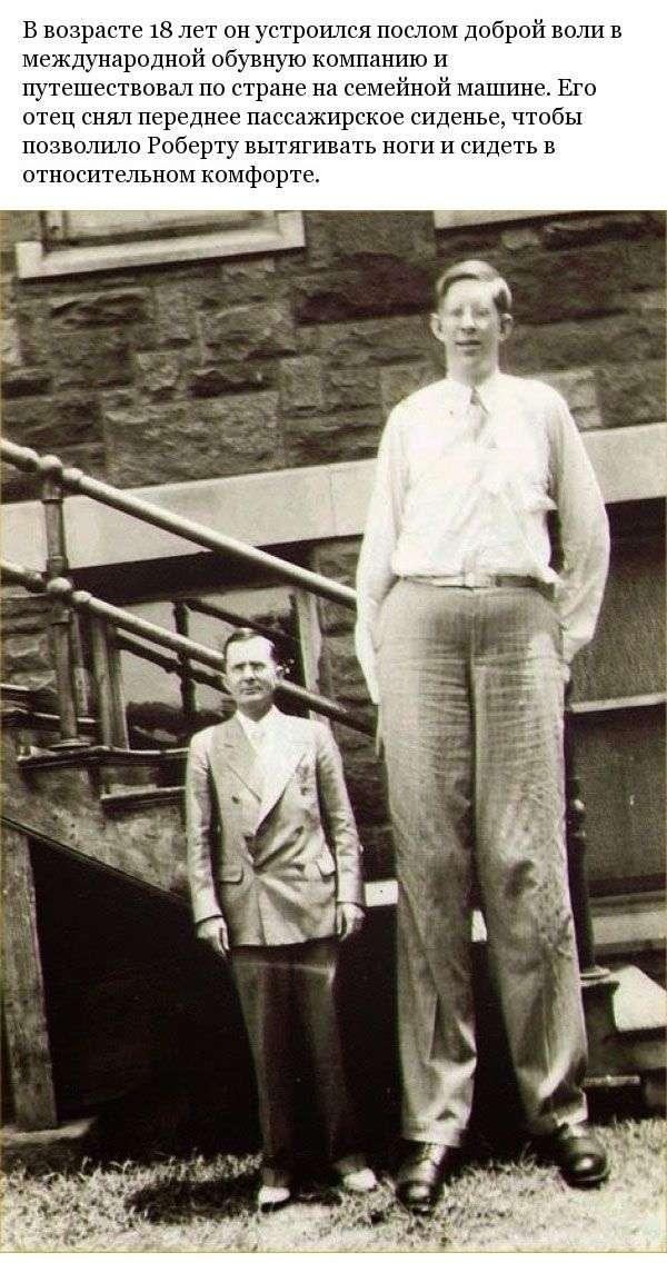 Каково быть самым высоким человеком на планете (15 фото)