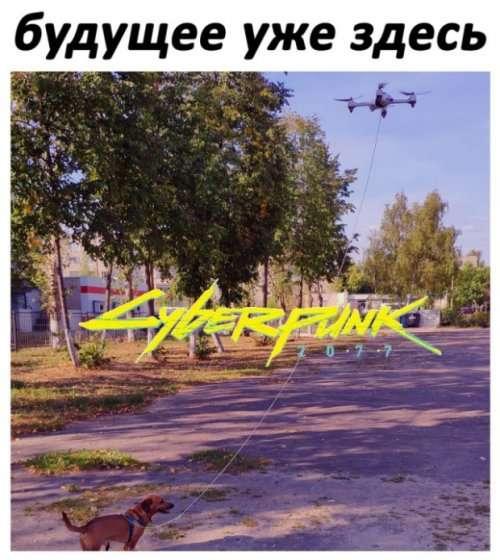 Сборник прикольных картинок (39 шт)