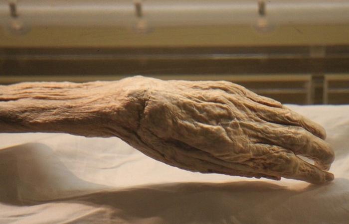 Тайна мумии леди Дай