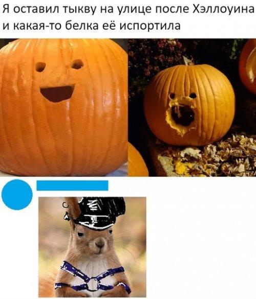Новые прикольные комментарии из социальных сетей (18 фото)