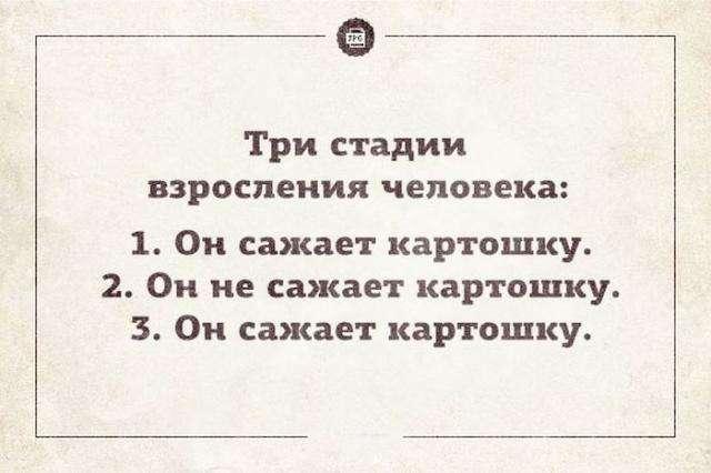 Современные правила юмора в Интернете (29 фото)