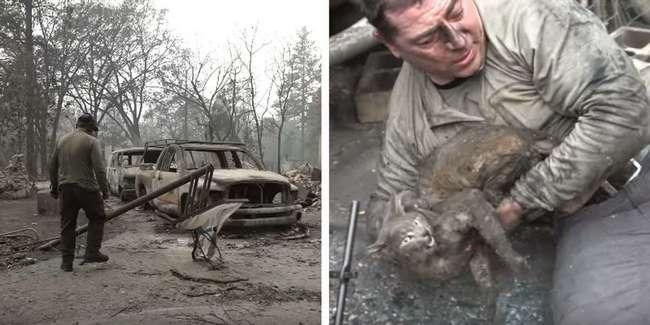 Мужчина со слезами на глазах достал кошку из-под сгоревшего грузовика
