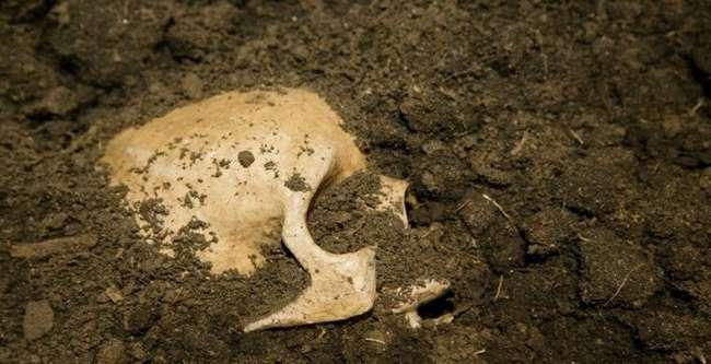 На Нормандских островах обнаружен загадочный скелет без рук (3 фото)