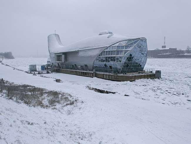 На Неве стоит огромный металлический кит (8 фото)