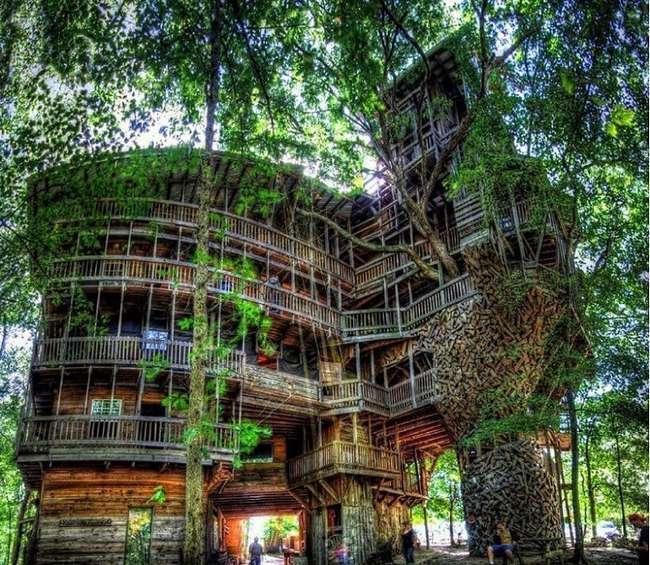 Священник построил 10-этажный дом на дереве с 80 комнатами (12 фото)