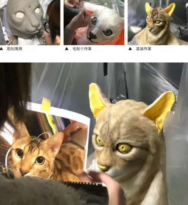 Очередной странный тренд в Японии