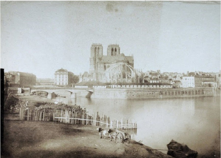 Собор Парижской богоматери — интересные факты из истории