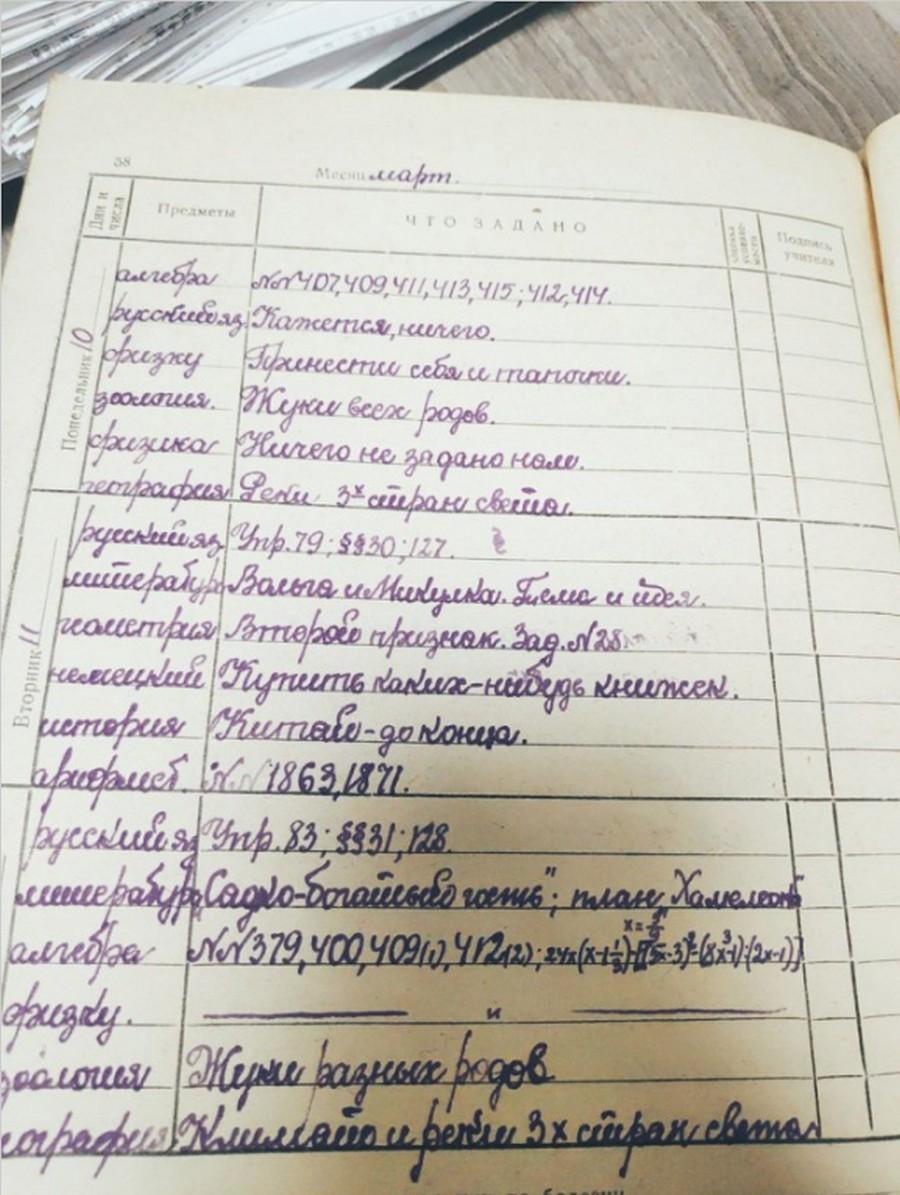 Забытое искусство каллиграфии: как писали школьники в 1951 году