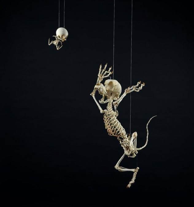 Анатомические скульптуры, разных героев мультфильмов. ( 9 фото )