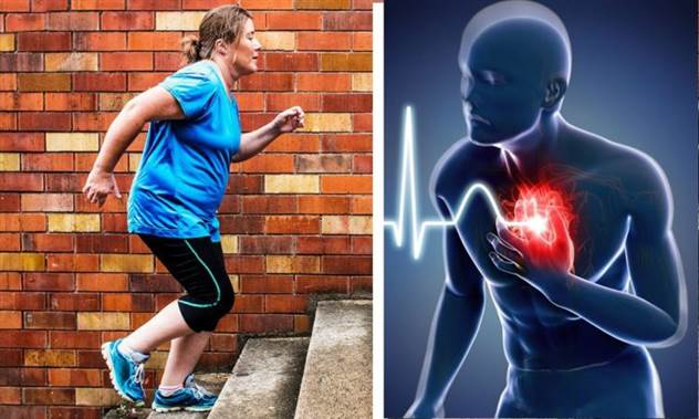 Как проверить, насколько изношено ваше сердце — тест с помощью лестницы ( 5 фото + 1 видео )