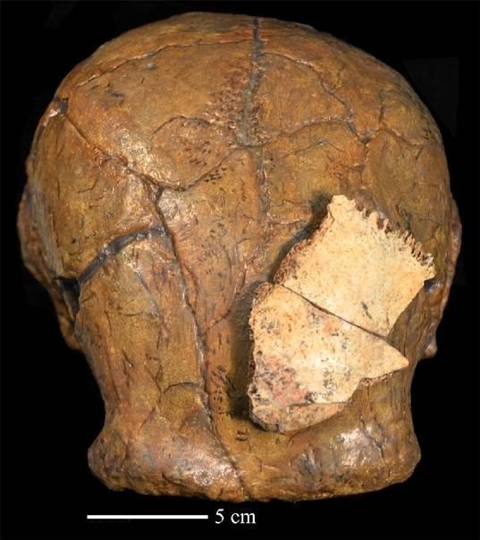 Китайские ученые обнаружили останки древних людей, живших около 300 тыс. лет ( 1 фото )