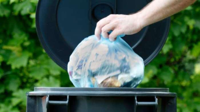 Для чего насыпают соду в мусорное ведро опытные хозяева