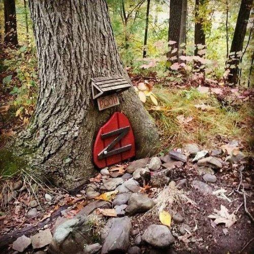 36 самых странных и интересных вещей, которые люди находили во время прогулок по лесу