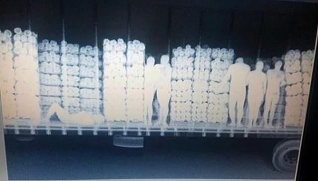 На границе Аризоны остановили фуру и просканировали ее рентгеном