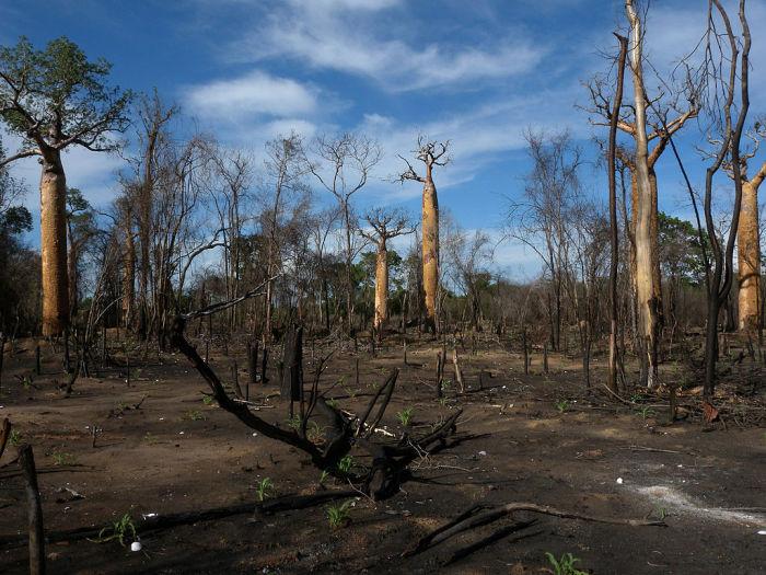 Знаковые места на нашей планете, которые скоро могут исчезнуть
