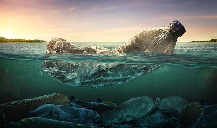 6художников, которые используют свой талант, чтобы помочь сохранить океан