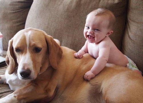 20 фотографий, наглядно показывающих, почему в семье, где есть дети, обязательно должны быть домашние животные