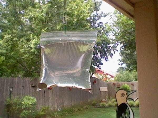 Гениальное устройство, чтобы избавиться от надоедливых мух и комаров! ( 5 фото )