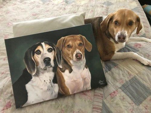 """Художница пишет портреты домашних животных, и вот несколько готовых работ рядом с довольными """"заказчиками"""" (10 фото)"""