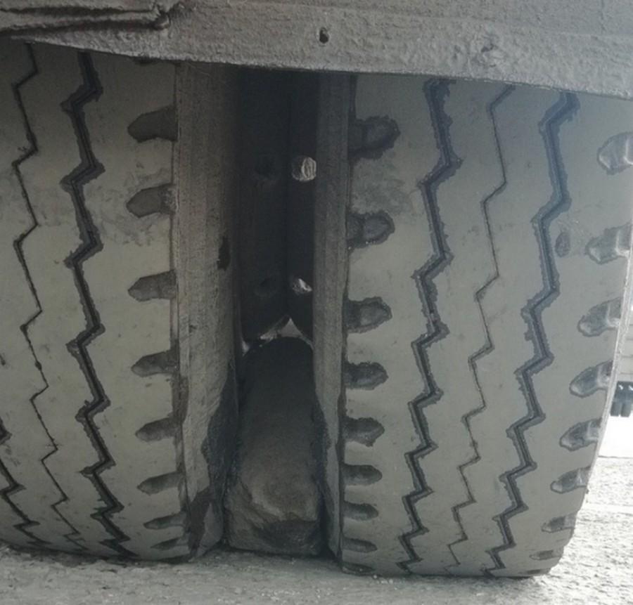 Спарка колес на зерновозе может принести множество сюрпризов