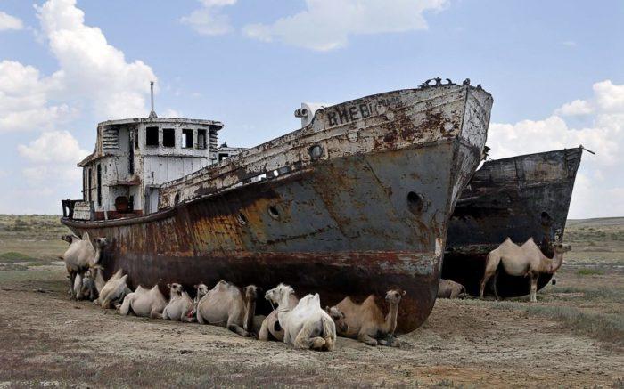 Как живёт сегодня Арал – море, которое принесли в жертву хлопку  ❘ фото