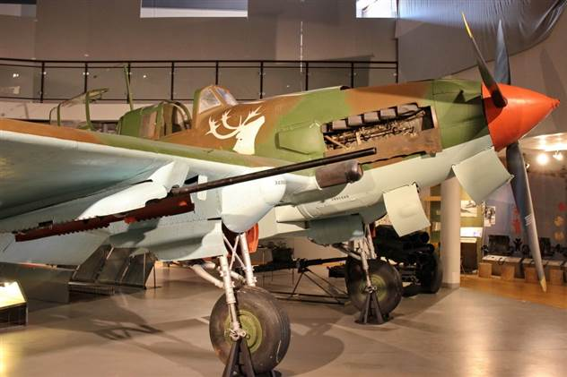 Ил-2 с оленем на борту ( 22 фото )