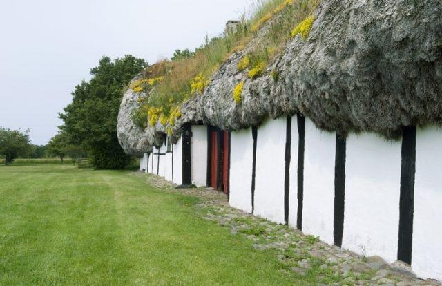 Удивительные дома с крышами из морских водорослей ❘ фото