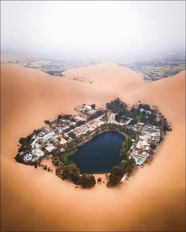 Оазис в пустыне ❘ фото
