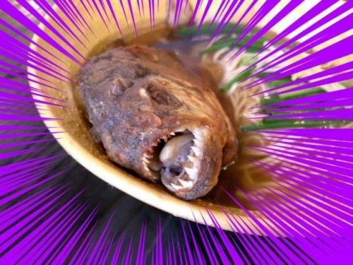 Блюдо из пираньи, которое способно вас напугать (5 фото)