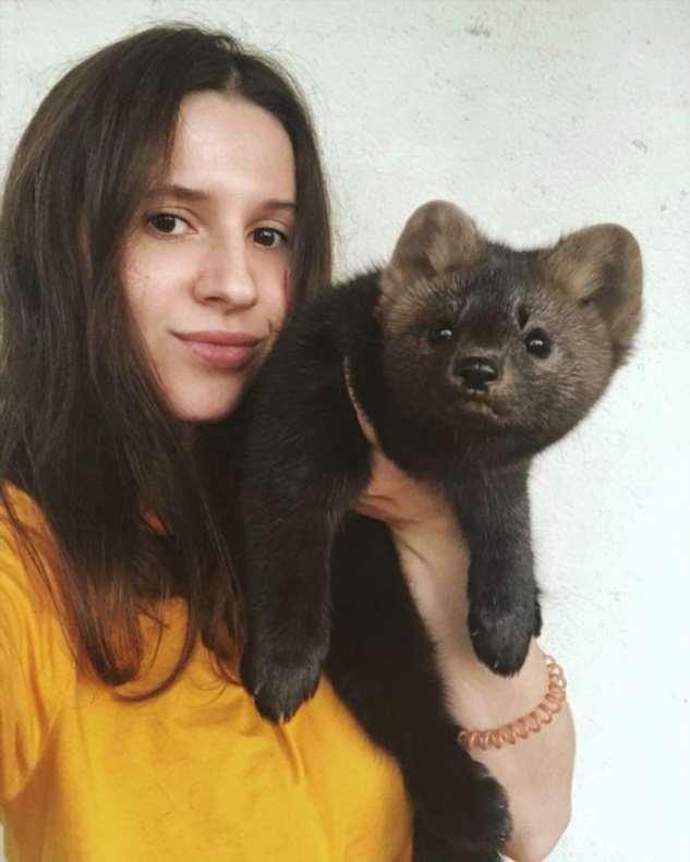 Умора — соболь, который стал питомцем девушки из России (16 фото)