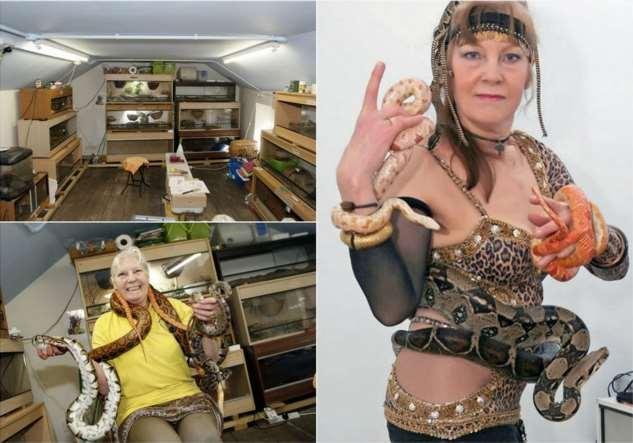 Британке огромная коллекция змей стоит половину пенсии