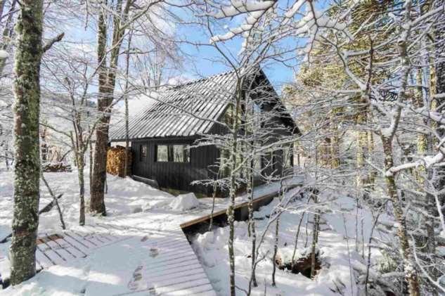Дом в лесу Чили ❘ фото