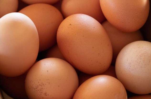 Субхаш Ядав, 50 куриных яиц и дурацкий спор