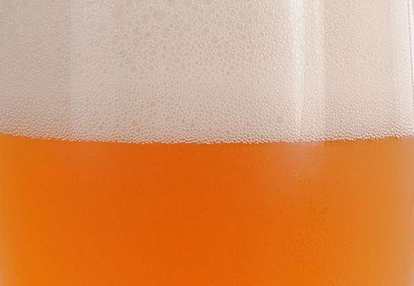 Сорта пива от самых безобидных до самых вредных