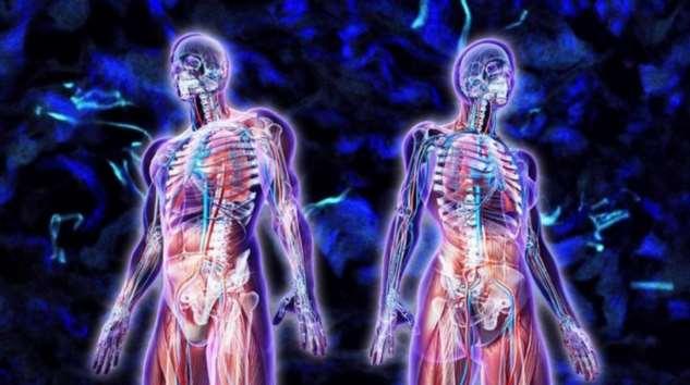 Необычные вещества, которые есть в теле человека