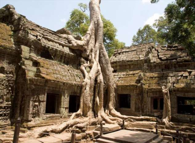 Камбоджийский храм Та Пром (25 фото)