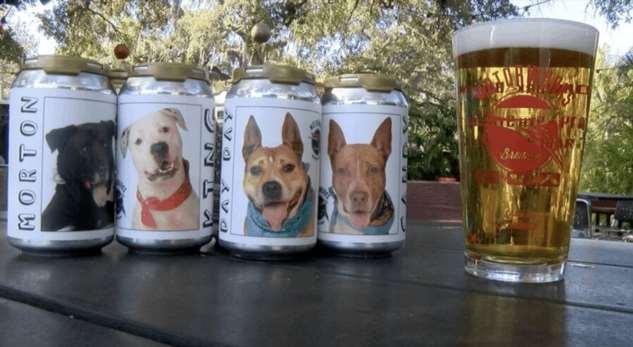 Женщина нашла свою собаку спустя 3 года благодаря банке пива