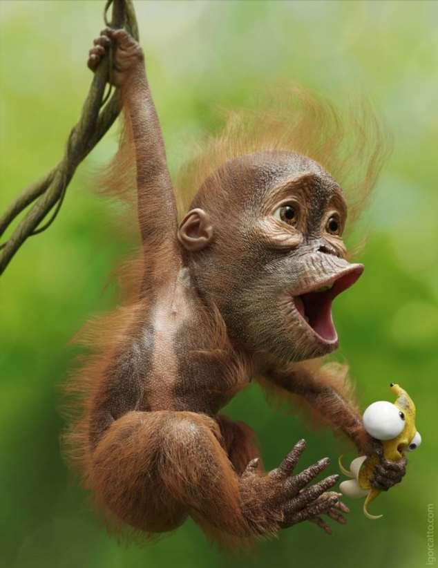Забавные картинки с животными. Подборка №zabavatut-53080425032020